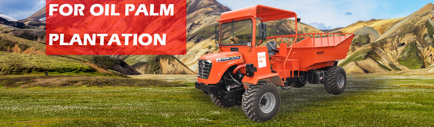 China best Mini Crawler Dumper on sales